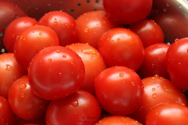 ripe red tomatoes with water droplets in the sun
