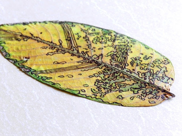 Decorated Dried Leaves
