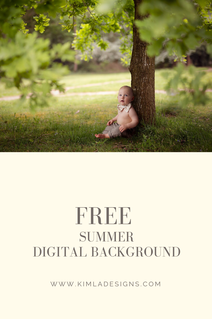 Plant - Top 9 Photography Freebies You Should Try this Summer