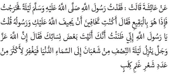 """Aku kehilangan Rasulullah SAW pada suatu malam. Kemudian aku keluar dan aku menemukan beliau di pemakaman Baqi' Al-Gharqad"""" maka beliau bersabda """"Apakah engkau khawatir Allah dan RasulNya akan menyianyiakanmu?"""" Kemudian aku berkata: """"Tidak wahai Rasulullah SAW, sungguh aku telah mengira engkau telah mendatangi sebagian isteri-isterimu"""".Kemudian Rasulullah SAW bersabda"""