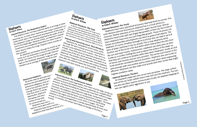 Informational Text Articles Fourth grade