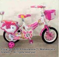 16 Erminio 2205 Dolphins Purple Kids Bike