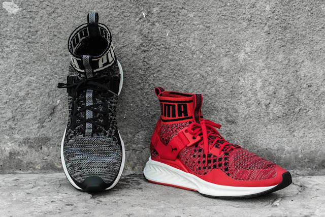 Puma Ignite evoknit price