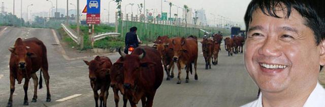 Ngành giao thông cần một bộ trưởng giỏi nhưng chắc chắn đó không phải là ông Đinh La Thăng