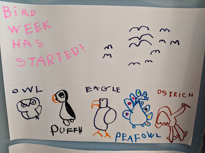 "Paper with kid's drawing, saying ""Bird week has started!"" with labeled pictures of owl, puffin, eagle, peafowl, and ostrich."