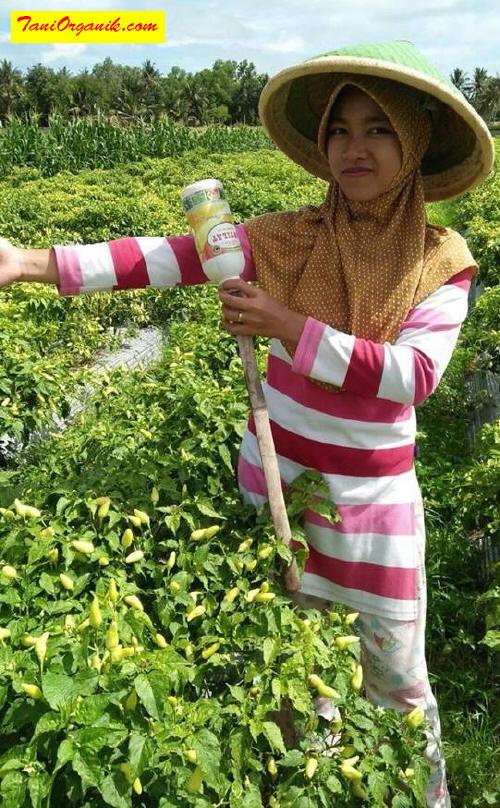 Ibu Ichmyati nampak bangga dengan produk-produk BMW dan senang dengan hasil yang diperoleh. Kami pun turut senang mendapat kepercayaan dari para petani dari berbagai pelosok di Indonesia. Maju terus.. semangat!!