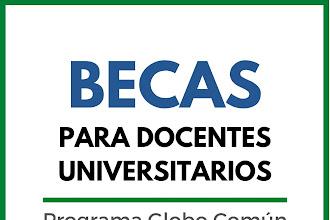 Becas de Formación y Capacitación para Docentes Universitarios - Programa Globo Común
