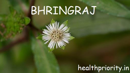 7 Amazing Hair, Skin, Eye and Health Benefits Of Bhringraj Or Eclipta Alba Plant