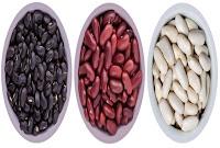 Diferencias Nutricionales entre las Caraotas Negras, Caraotas Rojas y Caraotas Blancas
