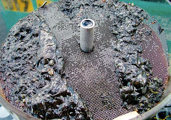 Los microorganismos causan corrosión en los metales