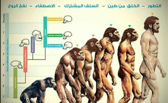هل سيدنا آدم هو أبو الخلق وقبل خلقة كان يوجد بشر علي كوكب الأرض
