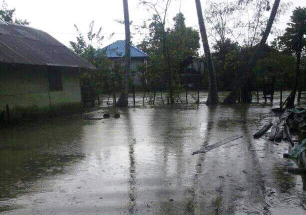 Banjir kiriman tenggelamkan kolam Lele dan tambak warga. Ratusan kilo ikan Lele Keuchik Edi Palong di bawa banjir.