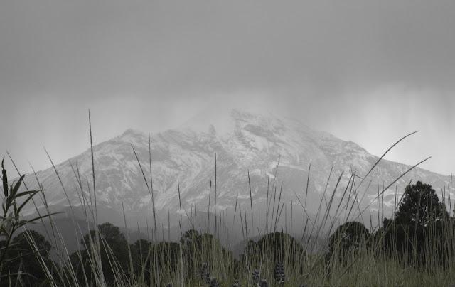 El incendio forestal en el volcán Iztaccíhuatl fue liquidado en su totalidad: Conafor