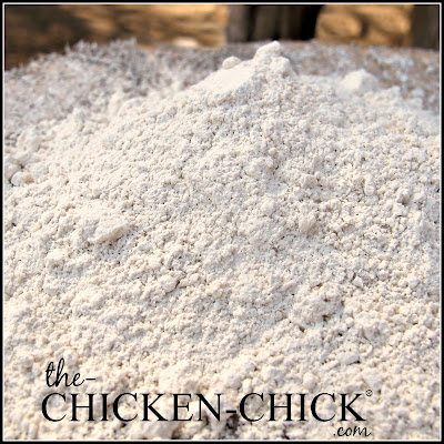 The Cut & Dry Truth about Diatomaceous Earth DE & Chickens