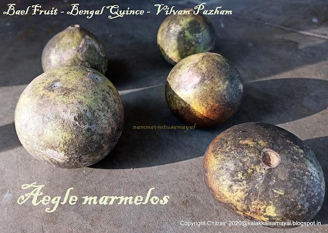 Bael fruit [ Aegle marmelos ]