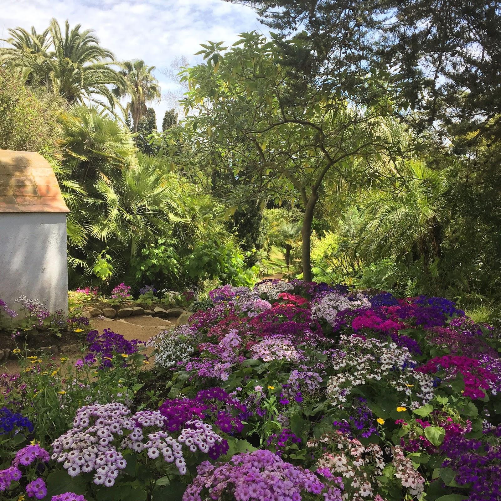 Gem 39 s country life visiting jardin botanico marimurta for Jardin spanish