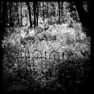 Evergreen Cemetery, 2013
