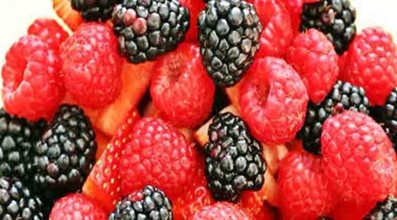 Gambar jenis dan khasiat buah beri untuk kanker