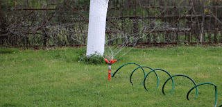 My irrigation is set up and it works