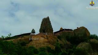Sholingur Narasimha Temple