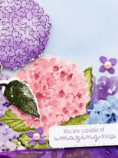 My alternative project for the CSTB Tutorial Blog Hop for Match featuring Hydrangea Haven Click here to learn more