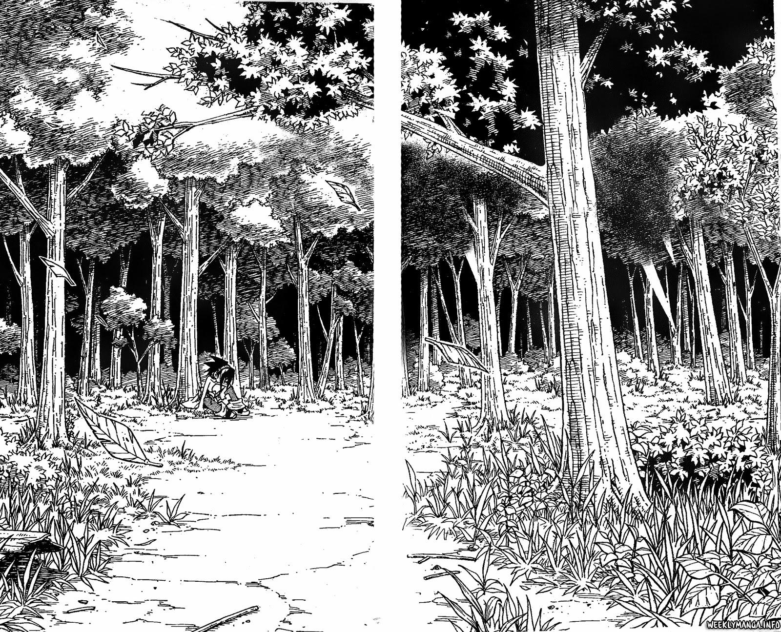 Shaman King [Vua pháp thuật] chap 195 trang 12