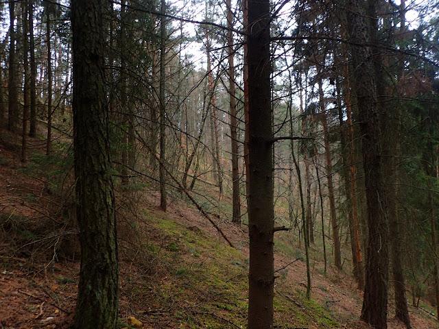 Najbardziej stromy odcinek na najwyższej górze łódzkiego