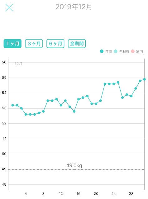 レコーディングダイエット,標準体重56.3kg,美容体重51.2kg,リバウンド