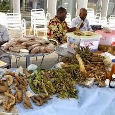 Medicina Africana1
