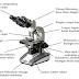 Pengertian, Bagian Dan Fungsi Mikroskop