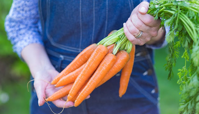 5 Awesome Health Benefits Of Eating Carrots