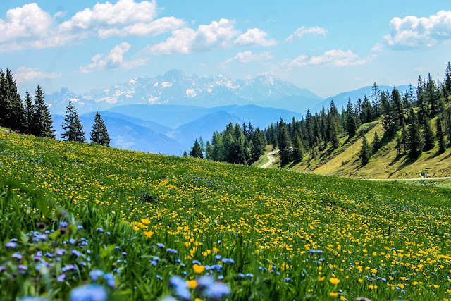 Top 10 Romantic Honeymoon Places in India, gulmarg weather