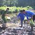 Ra quân trồng rừng ứng phó với biến đổi khí hậu năm 2019