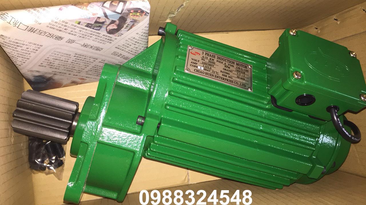 Motor dầm biên ITS CH-L-100 0.75Kw x 4P