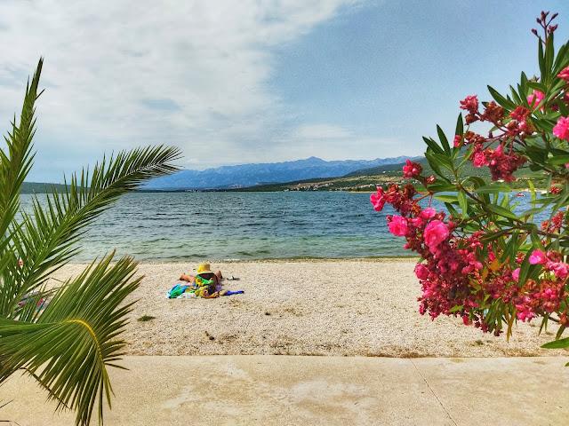 plaże w Chorwacji, oleander, palma, żwirek