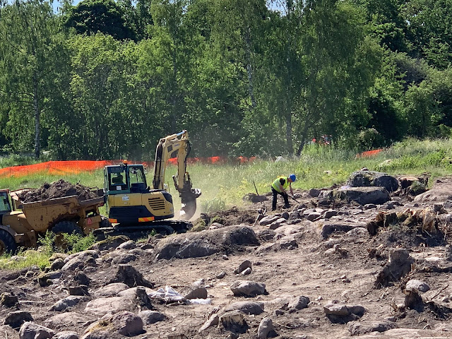 Viking-era farm excavated near Swedish capital