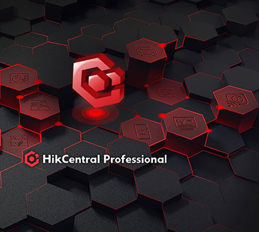 Hikcentrol Professional