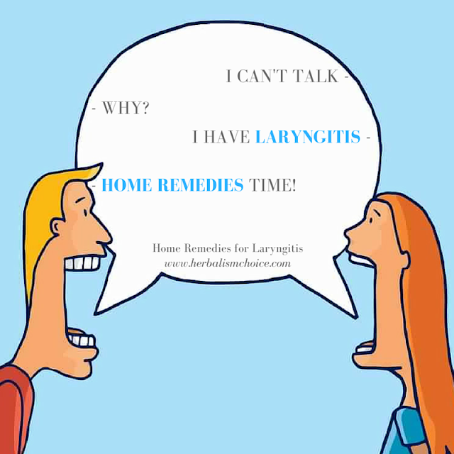 laryngitis home remedies