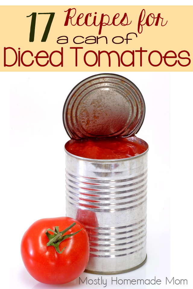 A list of 17 recipes using a can of diced tomatoes or canned tomatoes