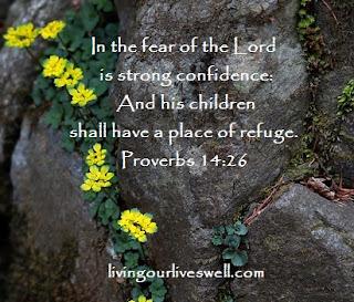 Proverbs 14:26