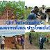 """CPF ชู """"เกษตรกรพึ่งตน ข้าวโพดยั่งยืน"""" ปลูกแบบรักษ์โลก รายได้เพิ่มแน่นอน"""