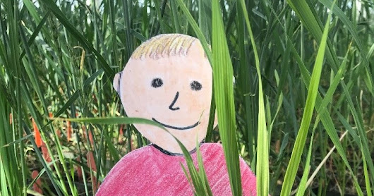 Flat Aggie with Kansas Wheat Improvement Center Math