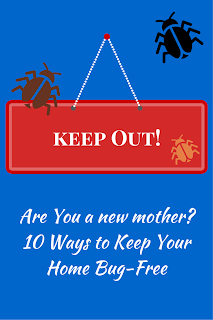 http://b-is4.blogspot.com/2015/01/are-you-new-mother-10-ways-to-bug-proof.html