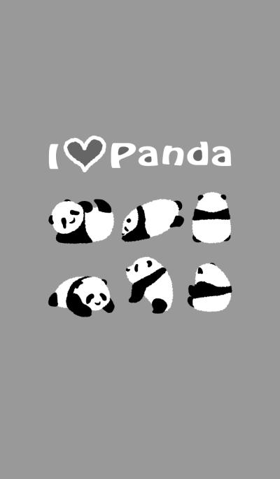 Cute Baby Panda - gray