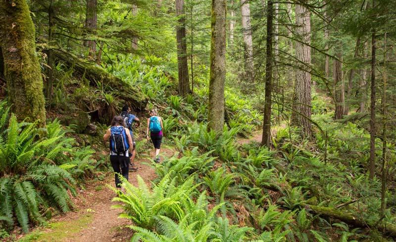 5 Fall Hiking & Biking Trails Near Charlotte