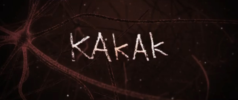 Film Bioskop Indonesia 2015: Kakak