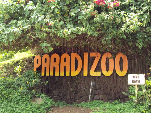 paradizoo address paradizoo in tagaytay paradizoo facebook butterfly farm in tagaytay how to go to paradizoo tagaytay zoo in alfonso cavite paradizoo number tagaytay zoo entrance fee
