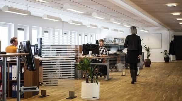 importância da diversidade dentro de uma empresa