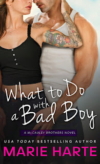 https://www.goodreads.com/book/show/21898366-what-to-do-with-a-bad-boy?from_search=true