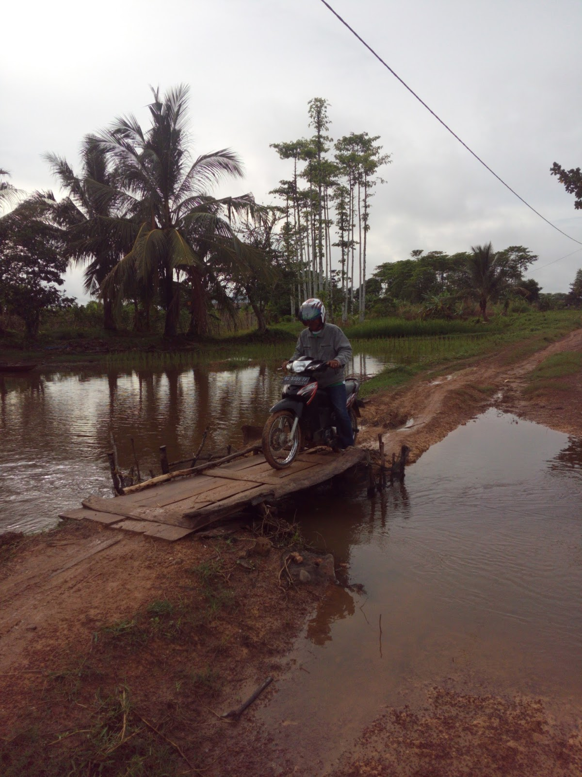 Jalan Dan Jembatan Kecamatan Rantau Panjang Rusak Krsumselcom